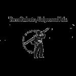ferropedroto_logo